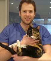 vétérinaire N. Bousse